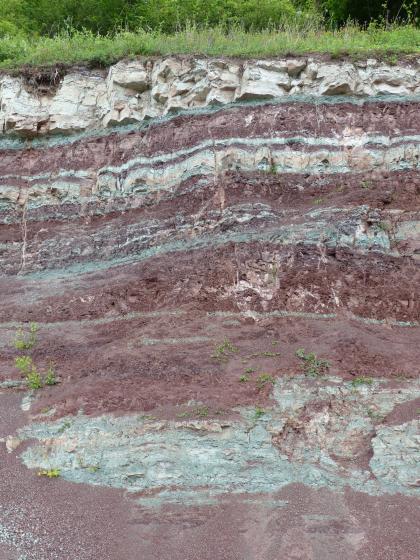 Teilansicht einer Gesteinswand. Das überwiegend violett gefärbte Gestein wird oben, nahe der grasigen Kuppe, von hellgrauen Bändern mit Blocksteinen durchzogen. Auch unten ist stellenweise hellgraue Färbung zu sehen, hier jedoch als länglicher Fleck.
