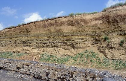 Blick auf eine nach rechts ansteigende Steinbruchwand mit waagrechten Schichten unterschiedlichster Färbung. Die oberen zwei Drittel der Wand sind hellbraun bis dunkelbraun, das untere Drittel ist teilweise graublau. Dazwischen liegen Erdhaufen.