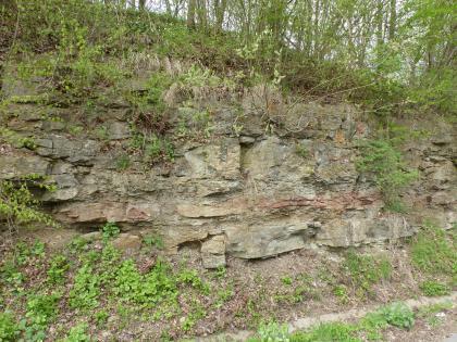 Blick auf eine stark zugewachsene, halbhohe Gesteinswand. In den sichtbaren, grauen Gesteinsblöcken ist unterhalb der Bildmitte ein rötlicher Streifen zu erkennen.