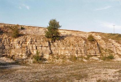 Blick auf eine langgezogene, halbhohe Steinbruchwand. Das rötlich graue, blockhafte Gestein steht leicht vor. Dahinter fällt das Gelände nach rechts hin ab. Im Vordergrund der Boden des Steinbruchs.