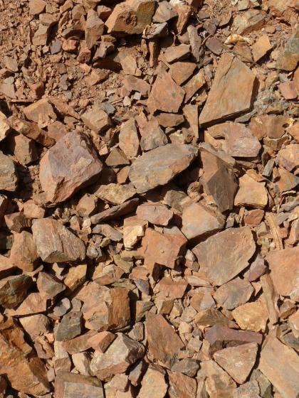 Nahaufnahme von größeren und kleineren, rotbraunen Gesteinsscherben.