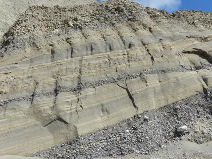 Das Bild zeigt eine nach rechts ansteigende Grubenwand. Das Material hat eine gelblich braune Farbe, unterbrochen von einzelnen grauen Streifen. Am Fuß der Wand sowie an deren Kuppe steht Kies an.