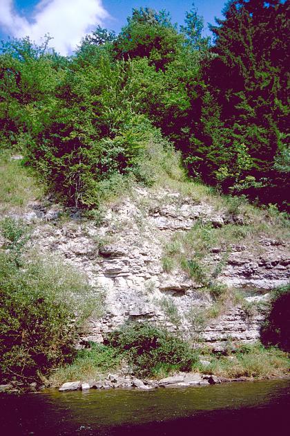 Entlang eines Flusses im Vordergrund erhebt sich eine Felsböschung. Das freiliegende Gestein ist weißlich grau und schrundig. Der Fuß und die Kuppe der Böschung sind mit Bäumen und Sträuchern bewachsen.