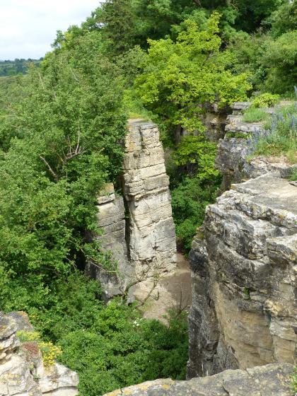 Von erhöhtem Standort aus blickt man auf eine sich rechts hinziehende Felsenmauer sowie zwei isoliert stehende Felstürme in der Bildmitte. Mauer und Türme sind von dichtem Buschwerk und Bäumen umgeben.