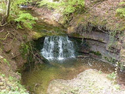Blick in ein wannenartiges Becken, das mit Wasser gefüllt und von Böschungen umgeben ist. in der Bildmitte ist ein kleiner Wasserfall zu sehen, der das Becken speist. Die Böschung rechts besteht aus einer halbhohen Gesteinswand.