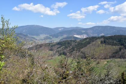 Blick aus großer Höhe über Baumspitzen auf Reihen bewaldeter Berge. Im Hintergrund sind zwei Steinbrüche erkennbar. Links sind Siedlungen verstreut.