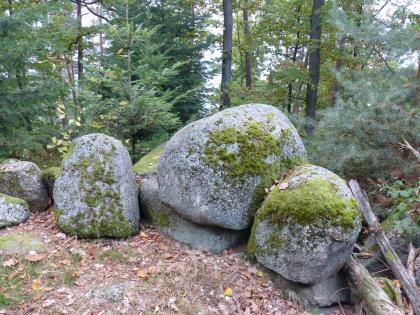 Blick auf eine kleine, aus mehreren Felsblöcken bestehende Felsgruppe. Die Blöcke sind hellgrau, oben abgerundet und bemoost. Sie befinden sich auf einer freien Fläche. Im Hintergrund stehen Nadelbäume.