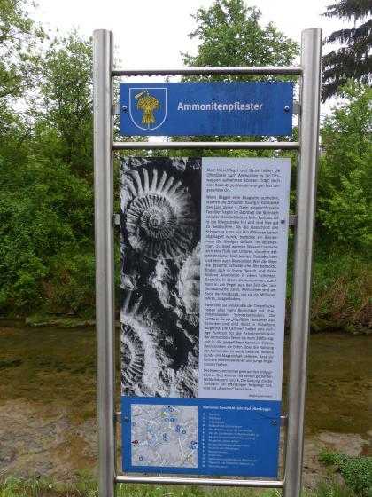 Blick auf eine bebilderte Schautafel zum Thema Ammonitenpflaster mit Stationen der Geschichtslehrpfades Ofterdingen. Die farbigen Tafeln sind an einem Metallrahmen befestigt.