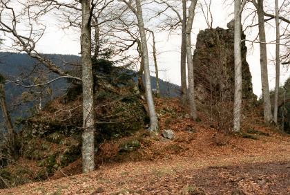 Am Rande einer Böschung, hinter mehreren schlanken Baumstämmen, ist rechts ein turmartiger Felsen zu erkennen. Links davon erhebt sich ein kleinerer, von Bäumen und Moos bewachsener Felsenbuckel. Den Hintergrund bildet ein bewaldeter Berg.