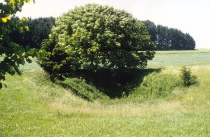 Das Bild zeigt eine schüsselförmige Bodenvertiefung auf einer Wiese. Die Grube ist bewachsen. Im Hintergrund liegen Felder und ein Wald.