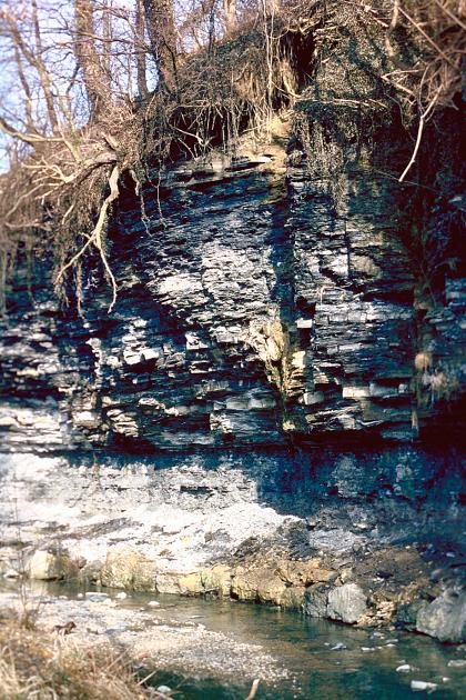Blick auf einen steilen Gesteinshang als Ufer eines Baches im Vordergrund.  Das teilweise vorkragende Gestein zeigt unterschiedliche Färbungen und Beschaffenheit. Die Kuppe oben ist stark bewachsen.