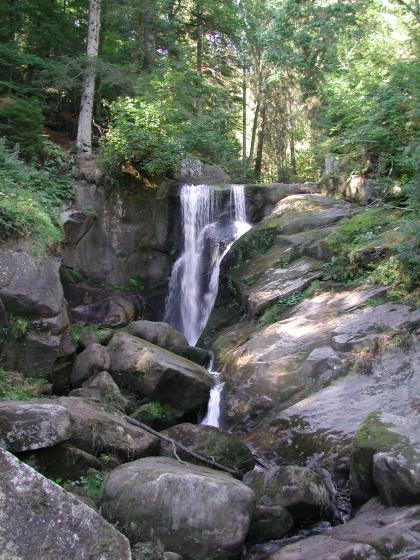 Das Bild zeigt ein enges, von Felsblöcken gesäumtes und von hohen Bäumen beschattetes Bachbett. Im Bildmittelgrund fließt ein schmaler Wasserfall.