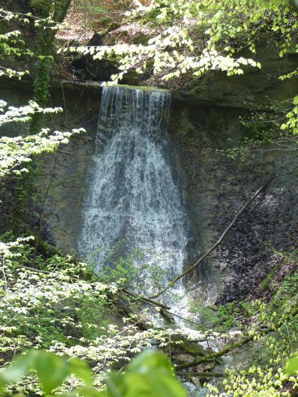 Blick auf einen hohen, breiten Wasserfall, der vor einer dunkelgrauen Gesteinswand herabstürzt.  Der Blick auf den Wasserfall wird von belaubten Ästen und Zweigen eingerahmt.