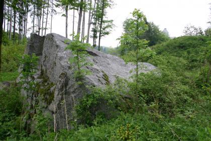 Wie der Körper eines großen Tieres liegt hier ein massiger, grauer, links gespaltener Felsblock zwischen Bäumen und Sträuchern. Im Hintergrund links stehen auf einer Böschung hohe Nadelbäume.