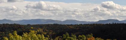 Blick von erhöhtem Standort über Baumspitzen auf einen langgezogenen, bewaldeten Bergrücken. Im Hintergrund verläuft eine ebenfalls bewaldete, zweite Bergkette mit unterschiedlich hohen Gipfeln.