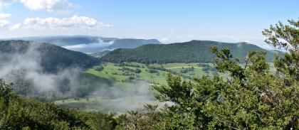 Von erhöhtem Standort blickt man in diesem Panoramabild auf mehrere Bergrücken, die teils bewaldet sind, teils grüne Hänge aufweisen. Links im Hintergrund befindet sich ein Taleinschnitt mit tiefhängenden Wolken. Im Vordergrund wachsen Sträucher.
