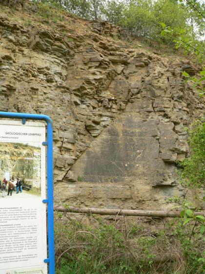 Hier sieht man eine steile rötlich braune, verwitterte Felswand, die von Bäumen und Sträuchern umgeben ist. Etwa in der Mitte der Felswand ist ein dunklerer, dreieckiger Bereich glatt geschliffen. Links ist noch ein Stück von einer Schautafel zu sehen.
