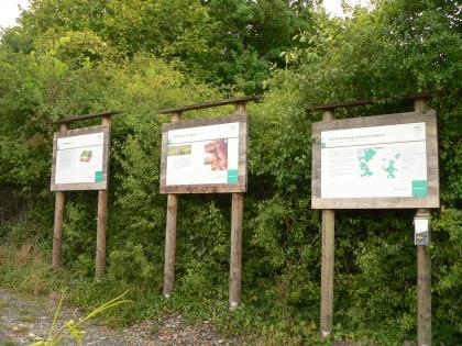 Hier sieht man drei unterschiedliche Schautafeln, die entlang des Erlebnisweges Steinbruch Nußloch stehen. Die farbigen Tafeln haben hölzerne Rahmen und Standbeine. Hinter den Tafeln breitet sich Gebüsch aus.