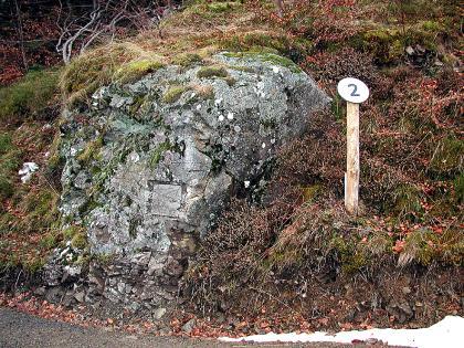 Das Bild zeigt einen rundgeschliffenen grauen Felsblock an einem Hang. Dichtes Gestrüpp umgibt den Felsblock.
