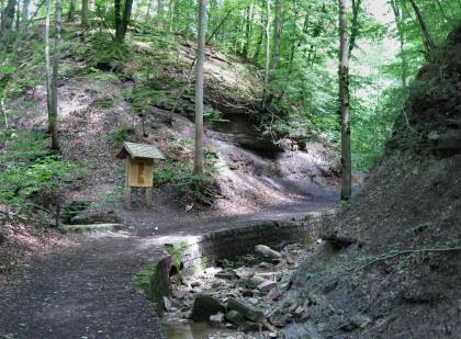 Das Foto zeigt den Verlauf eines gewundenen, von einer Schautafel links begleiteten Lehrpfades. Rechts vorne begleitet ein von Geröll gefüllter schmaler Bach den Weg, zum Hintergrund hin steigt ein bewaldeter, steiler Hang auf.