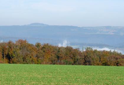 Blick über eine Wiese und eine Baumgruppe hinweg auf ein Tal und bewaldete Bergrücken. Im Hintergrund links ist eine Erhöhung, ein Vulkankegel, erkennbar.