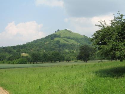 Hinter einer Wiese erhebt sich eine teilweise bewaldete Vulkankuppe. Rechts vorne ragen die belaubten Äste eines Baumes ins Bild.