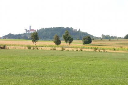Auf eine Wiese im Vordergrund folgen mehrere bewirtschaftete Felder. Im Hintergrund erhebt sich ein runder, bewaldeter Bergrücken, auf dem sich links eine Kirche und rechts ein Burgturm befinden.