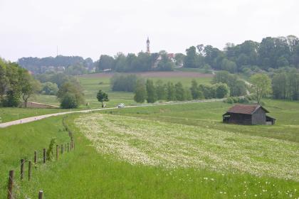 Blick auf eine blühende Wiese mit Scheune im Vordergrund. Eine gewundene Straße führt an der Wiese entlang zu einer flachen Anhöhe im Hintergrund. Die Anhöhe ist mit Bäumen bestanden. Dahinter sind Häuser sowie ein Kirchturm zu erkennen.