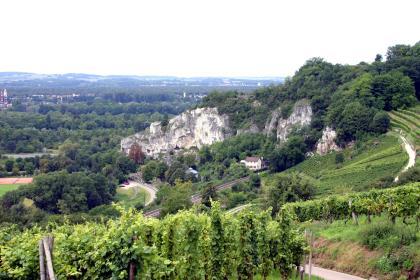 Schöner Blick über Rebterrassen im Vordergrund auf einen markanten, weißlich grauen Felsrücken im Mittelgrund. Rechts des Felsens, an einem aufsteigenden Hang, schließt sich Wald an. Links im Hintergrund liegen zwischen Waldflächen mehrere Siedlungen.