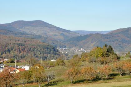 Blick über einen nach links abfallenden Hang mit Obstbäumen auf im Hintergrund aufsteigende, bewaldete Berge. Im Tal vor den Bäumen ist eine Siedlung zu erkennen.