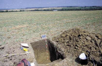 Auf einer weiten, begrünten Ackerfläche wurde ein Bodenprofil aufgegraben. Die glatte, von der Sonne erhellte Stirnwand der Grube sowie das aufgehäufte Bodenmaterial rechts daneben sind olivgrün gefärbt.
