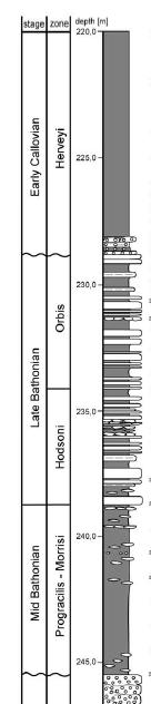 Grafische Darstellung einer geologischen Formation in schwarzweiß, mit Benennung der Schichten und Tiefenangaben links des Profils.