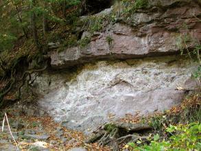 Das Bild zeigt eine grau-violette Gesteinswand, auf der - etwas überstehend - eine zweite, rötlich braune Gesteinsschicht aufliegt. Baumwurzeln und anderer Bewuchs umrahmen den Aufschluss.