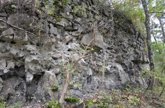 Blick auf eine bröckelig wirkende Mauer aus grauen, unregelmäßig geformten Steinen und Felsstücken. Die Mauer ist von Bäumen und Sträuchern umgeben.