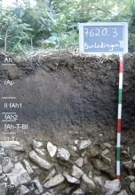 Das Foto zeigt ein Bodenprofil unter Wald. Es handelt sich um ein Musterprofil des LGRB. Das acht Horizonte umfassende, im unteren Drittel steinige Profil ist 90 cm tief.