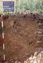 Das Foto zeigt ein Bodenprofil unter Grünland. Es handelt sich um ein Musterprofil des LGRB. Das sechs Horizonte umfassende Profil ist etwa 90 cm tief.