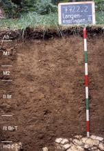 Das Foto zeigt ein Bodenprofil unter Wald. Es handelt sich um ein Musterprofil des LGRB. Das sechs Horizonte umfassende Profil ist 1 m tief.