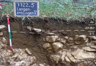 Das Foto zeigt ein Bodenprofil unter Wald. Es handelt sich um ein Musterprofil des LGRB. Das vier Horizonte umfassende, mit Gestein durchsetzte Profil ist über 60 cm tief.