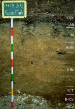 Das Foto zeigt ein Bodenprofil unter Wald. Es handelt sich um ein Musterprofil des LGRB. Das sieben Horizonte umfassende Profil ist über 1 m tief.