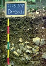 Das Foto zeigt ein Bodenprofil unter Wald. Es handelt sich um ein Musterprofil des LGRB. Das vier Horizonte umfassende und in der unteren Hälfte steinige Profil ist etwa 60 cm tief.