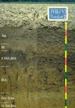Das Foto zeigt ein Bodenprofil unter Acker. Es handelt sich um ein Musterprofil des LGRB. Das sechs Horizonte umfassende Bodenprofil ist über 1,20 m tief.