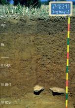 Das Foto zeigt ein Bodenprofil unter Acker. Es handelt sich um ein Musterprofil des LGRB. Das fünf Horizonte umfassende Profil ist über 1,30 m tief.