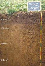 Das Foto zeigt ein Bodenprofil unter Acker. Es handelt sich um ein Musterprofil des LGRB. Das vier Horizonte umfassende Bodenprofil ist über 1,20 m tief.