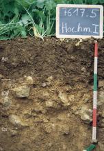 Das Foto zeigt ein Bodenprofil unter Acker. Es handelt sich um ein Musterprofil des LGRB. Das drei Horizonte umfassende Profil ist etwa 60 cm tief.