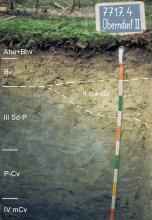 Das Foto zeigt ein Bodenprofil unter Nadelwald. Es handelt sich um ein Musterprofil des LGRB. Das sechs Horizonte umfassende Bodenprofil ist über 1m tief.