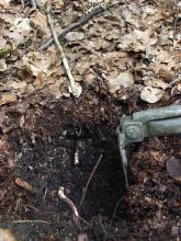 Nahaufnahme eines sehr dunklen, aufgegrabenen Bodens unter Wald. Der Kopf einer Hacke dient als Größenvergleich.