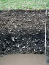 Das Foto zeigt ein Bodenprofil unter Grünland. Das Profil ist 1,20 m tief, ehe am Grund stehendes Wasser folgt.