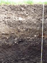Das Foto zeigt ein Bodenprofil unter Acker. Das Profil ist über 1,60 m tief.