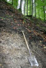 Bodenprofil aus hellgrauem, geröllhaltigen Boden an einem steilen Hang im Wald. Rechts auf dem Aufschluss liegt ein Spaten.