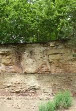 Das Bild zeigt eine unterschiedlich aufgebaute Gesteinswand unter Wald. Die obere Hälfte besteht dabei aus gelblichen groben Blöcken, die untere aus feineren, rötlich grauen Schichten.